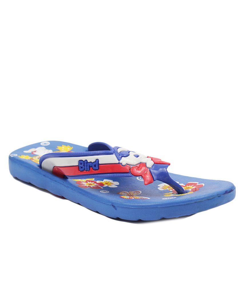 Aalishan Blue Slippers