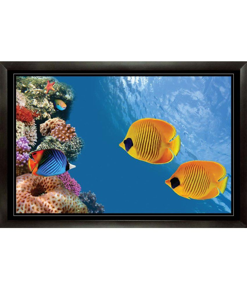 Mataye Graphics Fish in Ocean Aquarium Paintings with Frame