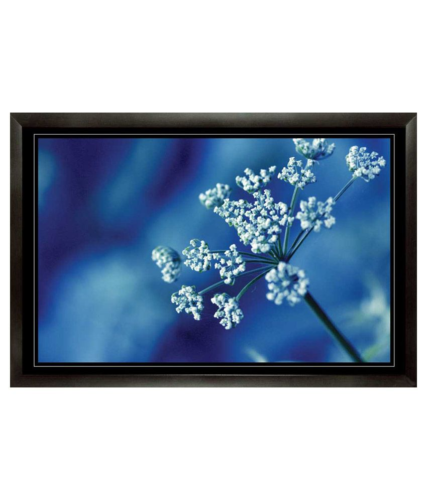 Mataye Graphics Blue Floral Paintings with Frame