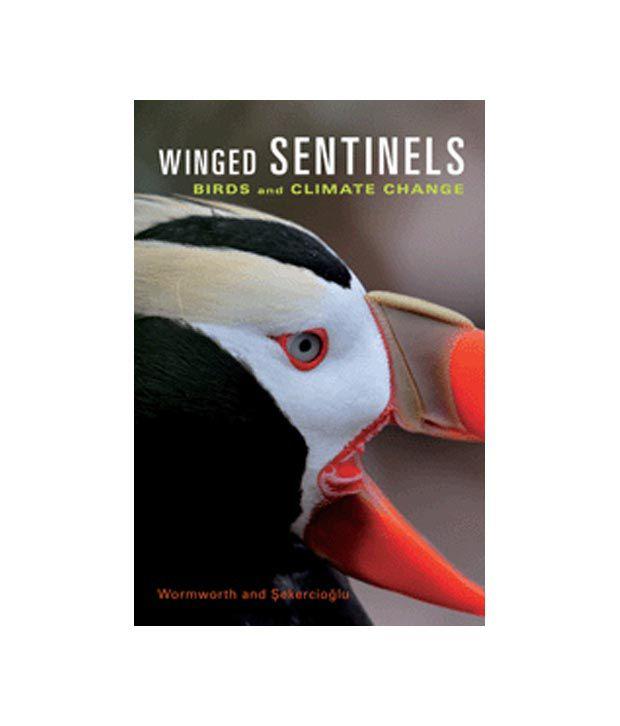Winged Sentinels
