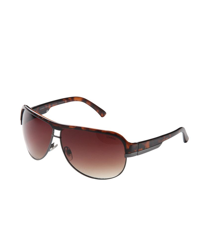 Izzara IZ-151 C1 Brown Men Aviator Sunglasses