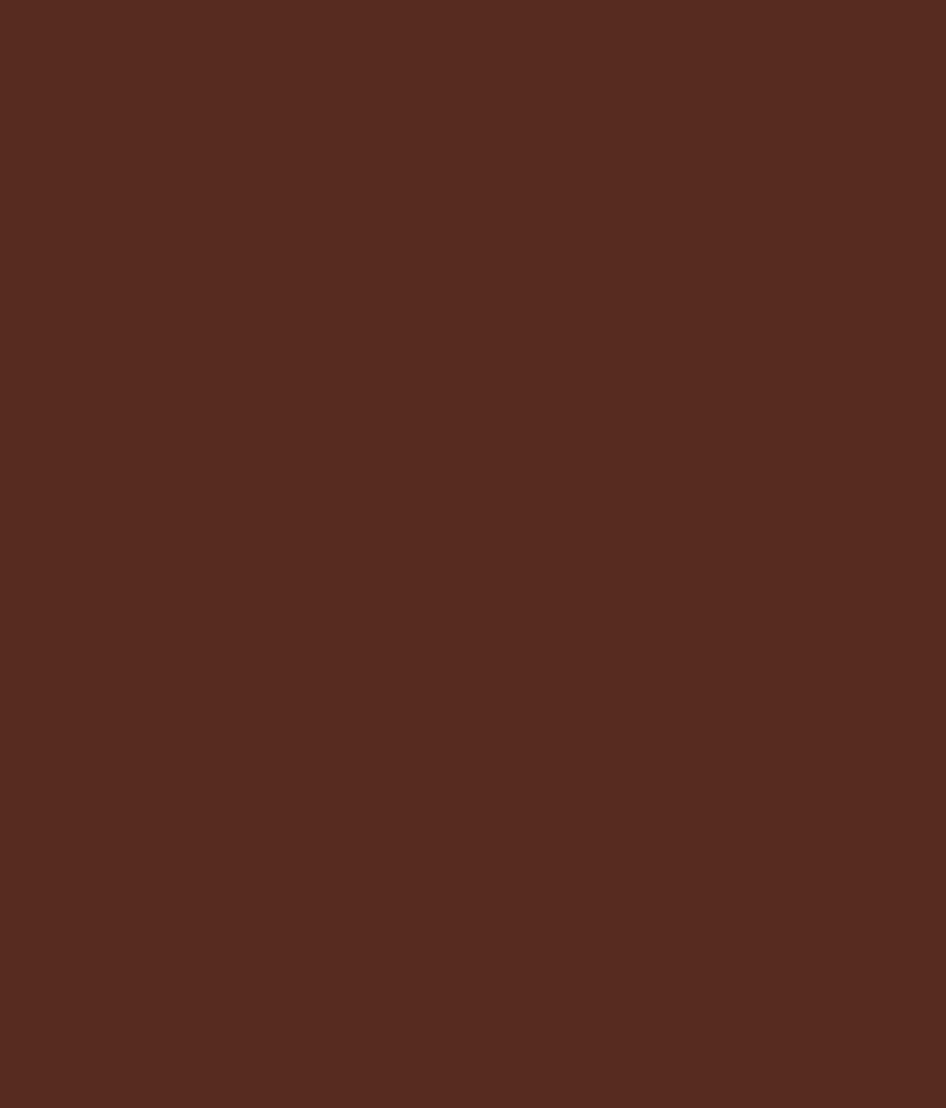 Buy Asian Paints Apcolite Premium Enamel Gloss Brown