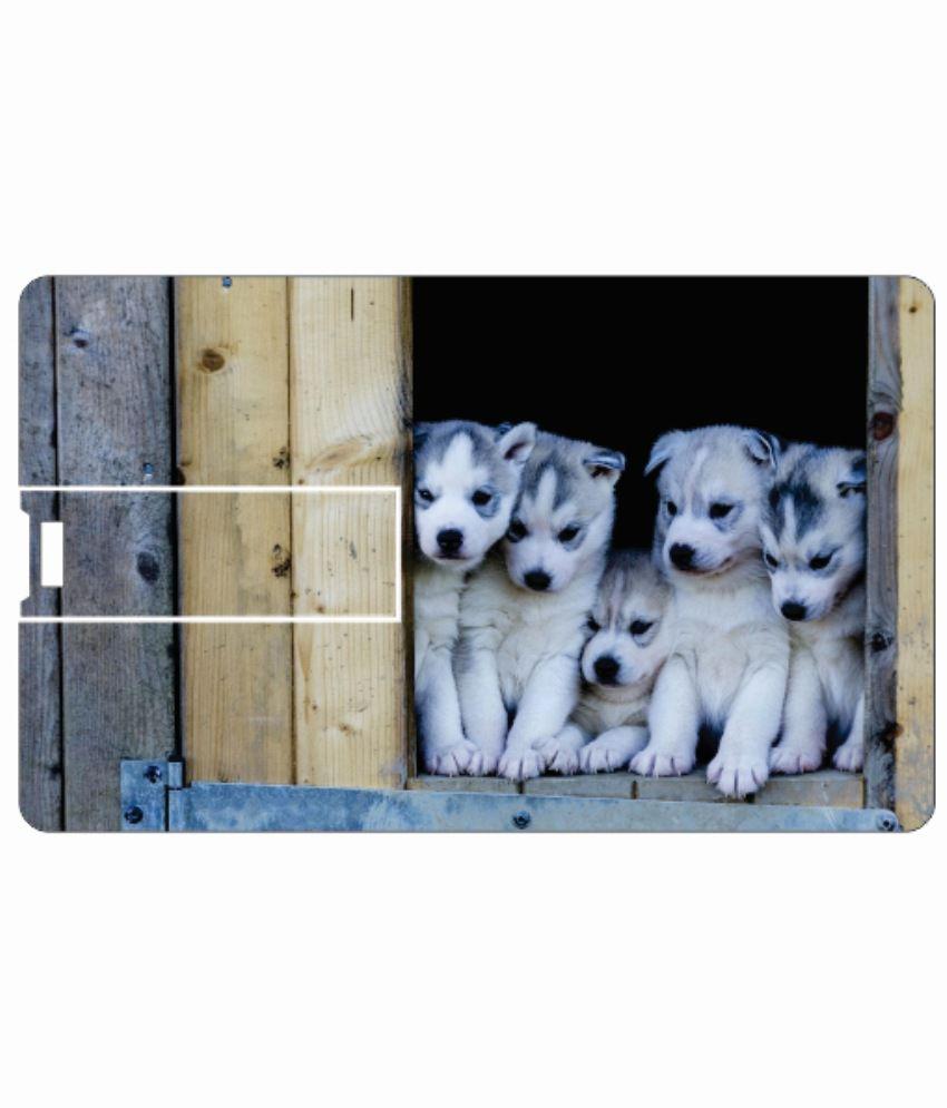 Printland Cute Puppies 8 Gb 8 Gb Pen Drives Multicolor
