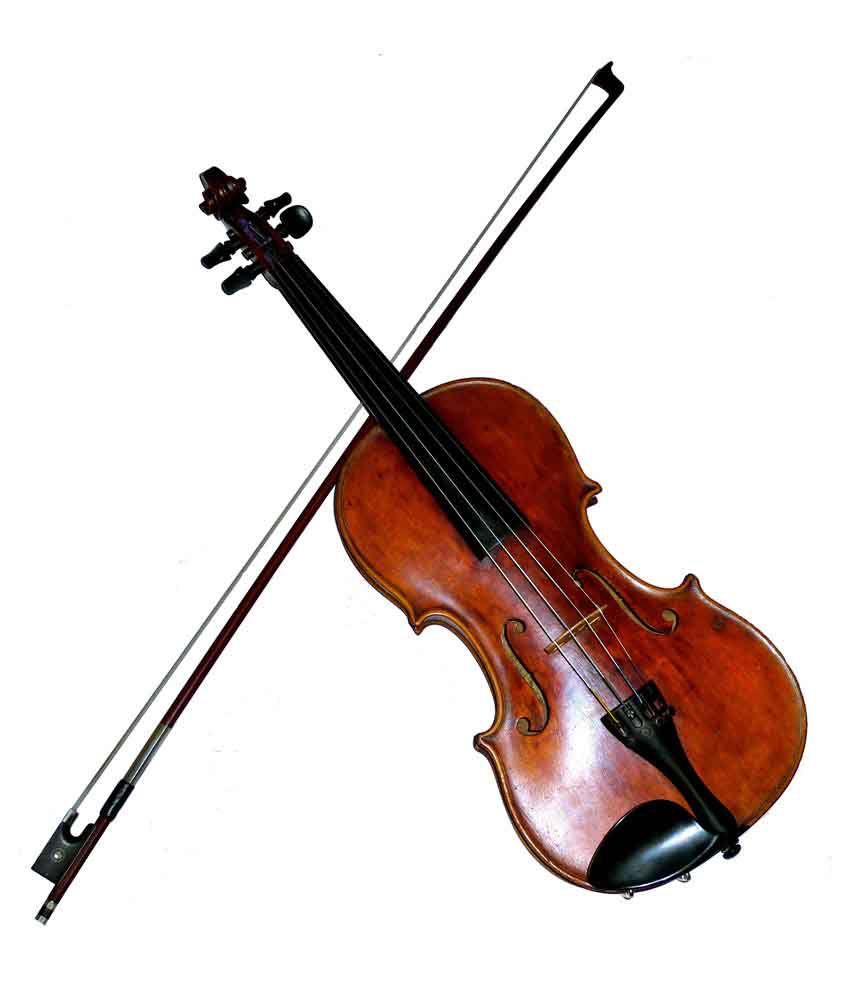 sg musical indian violin bow case buy sg musical indian violin bow case online at best. Black Bedroom Furniture Sets. Home Design Ideas