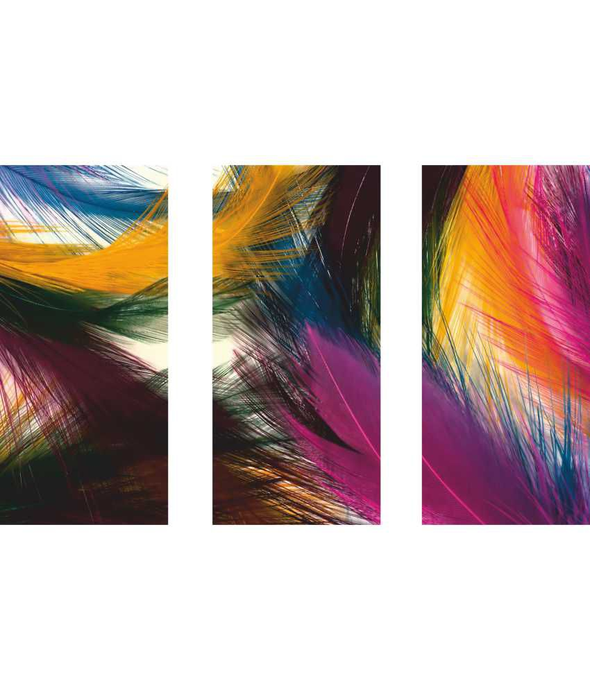 Anwesha's Feather Art 3 Frame Split Effect Digitally Printed Canvas Wall Painting