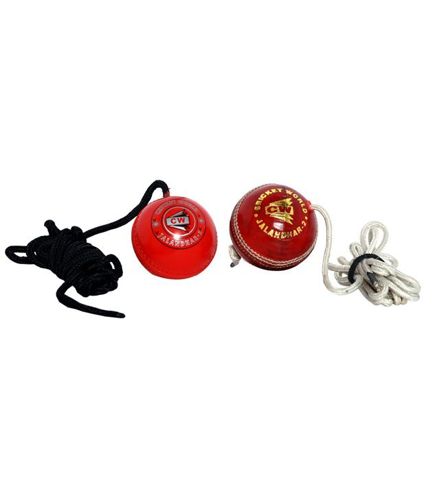 CW Cricket Hanging Ball Training Gear
