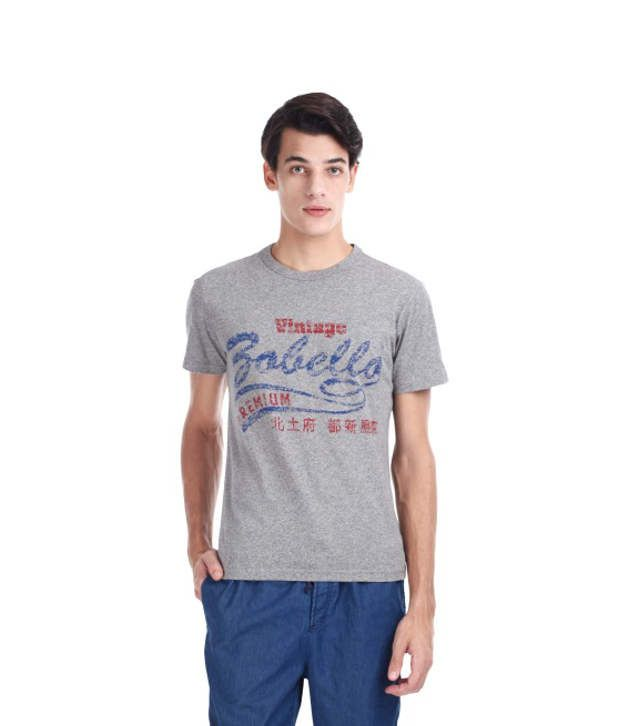 Zobello Gray Cotton T Shirt