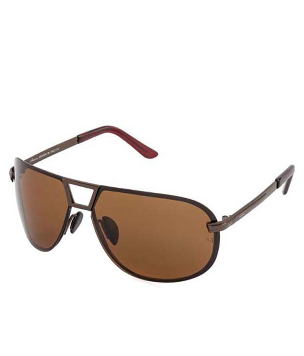 polarised sunglasses price  Velocity HA88029 Brown Polarised Sunglasses - Buy Velocity HA88029 ...