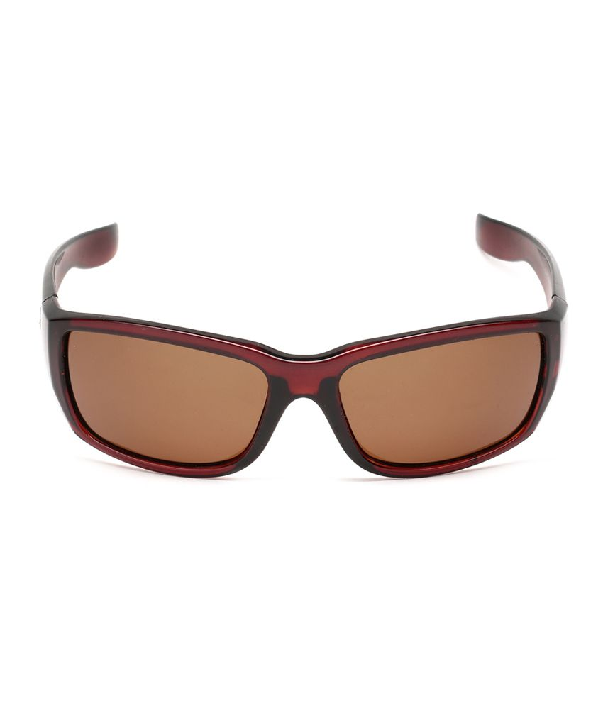 polarised sunglasses price  Estycal Brown Brave Heart Polarized Sunglasses - Buy Estycal Brown ...