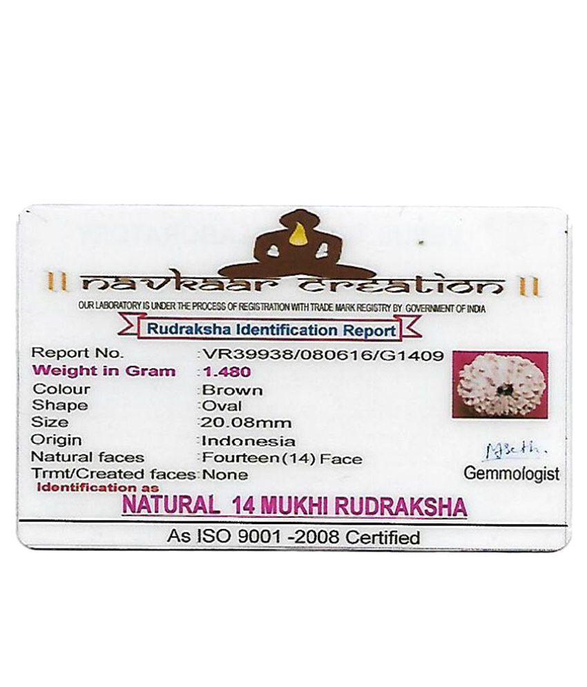 Navkaar Creation Rudraksha