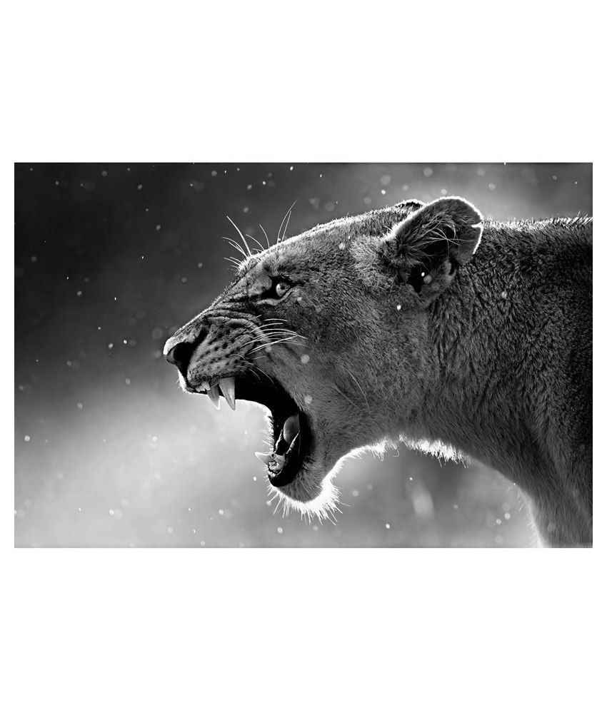 Artzfolio Lioness Canvas Art Print With Frame