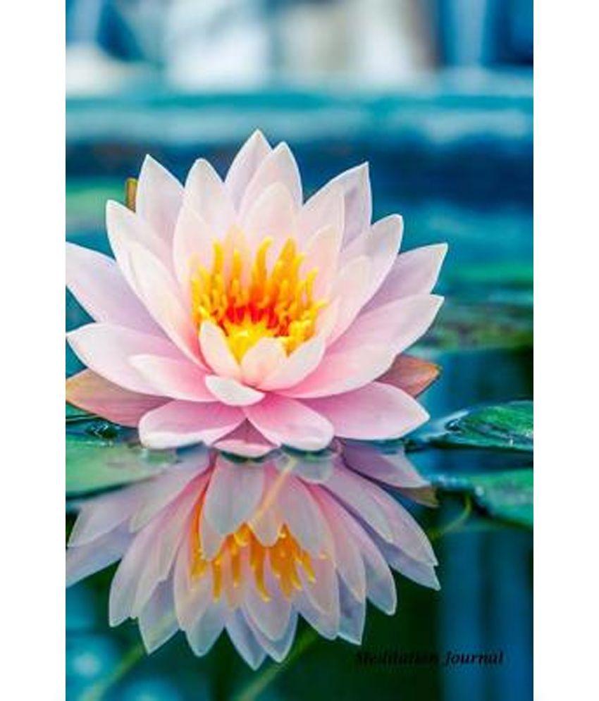 Meditation journal lotus flower pond lined journal blank book 6 x meditation journal lotus flower pond lined journal blank book 6 x 9 150 pages for mindfulness reflection insight meditation and stres izmirmasajfo