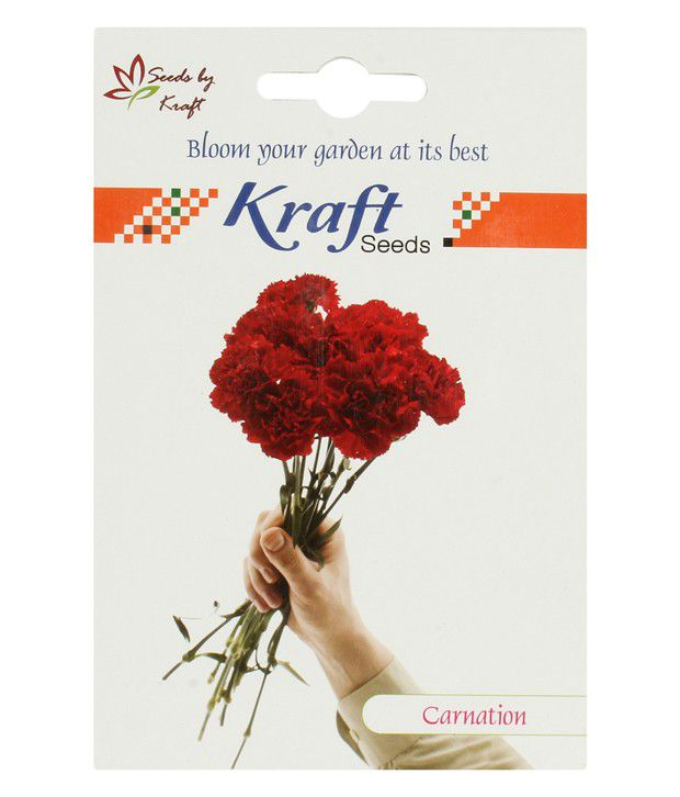 Kraft Seeds Kraft Seeds Mix Carnation Flower