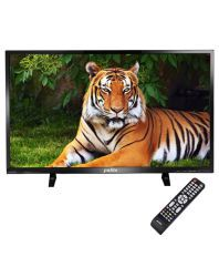 Palito KTV315-002 81 cm (32) HD Plus LED Television