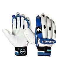 """Birdblue S (Boys) Right Hand Batsman """"Batting Gloves"""""""