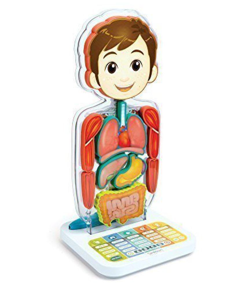 Smart Anatomy Interactive Human Body By Oregon Scientific Sa218