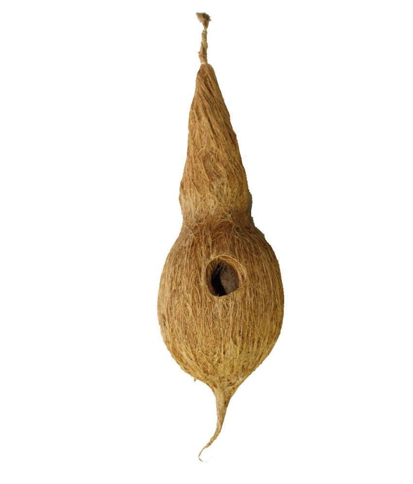 Jainsons Bird Brown Wooden Nest Medium for Finches/ Love Birds/budgerigar