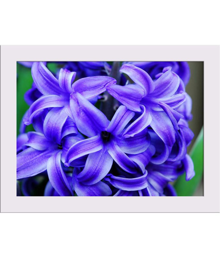 ArtzFolio Gallery Paper Art Prints With Frame Single Piece