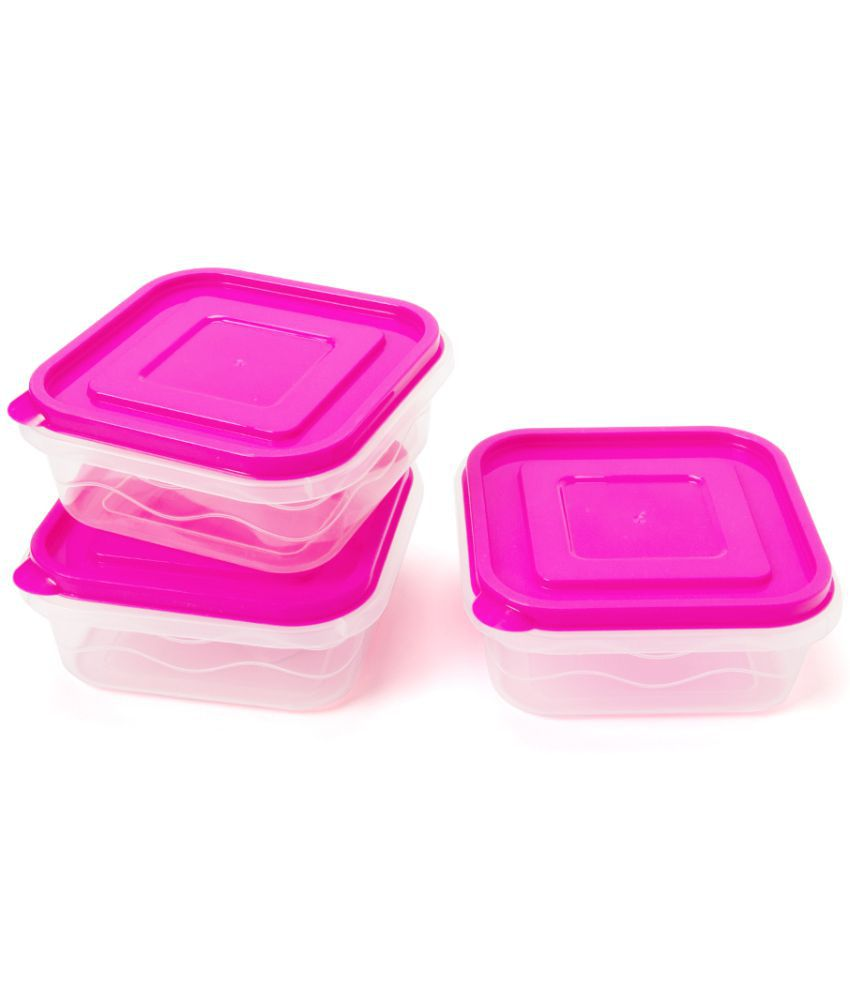 EZ Life Polycarbonate Food Container Set of 3 1 ml