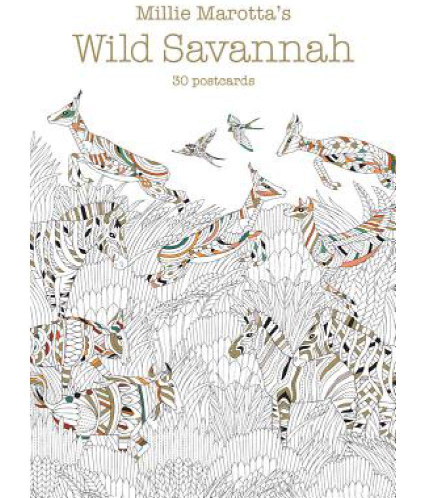 Millie Marottas Wild Savannah 30 Postcards Buy Marotta S SDL076751043 1