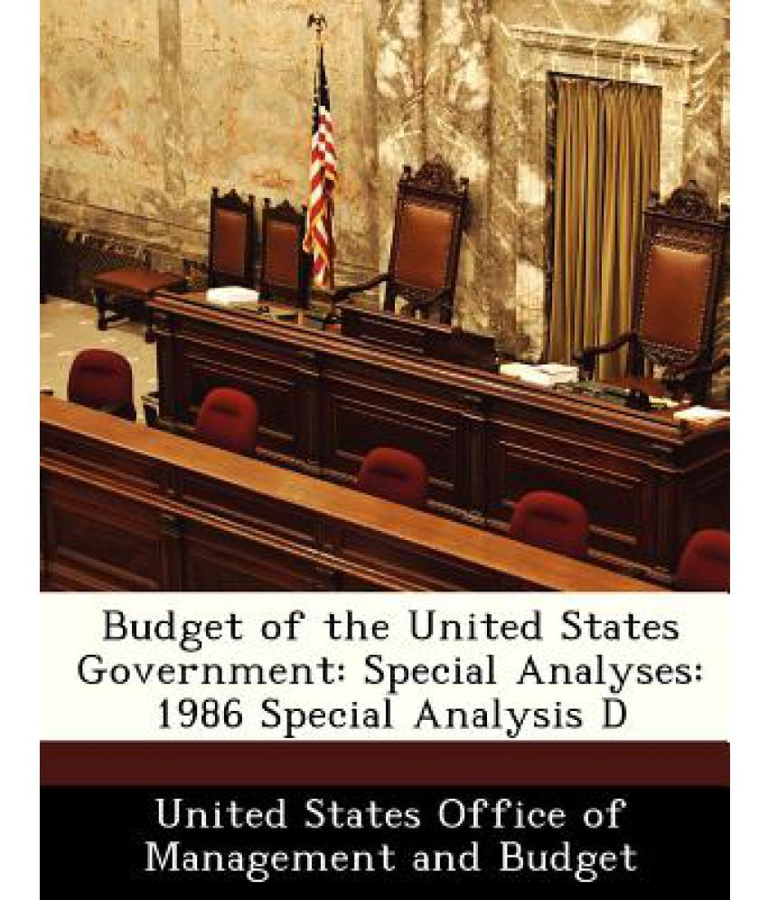 an analysis of united states government