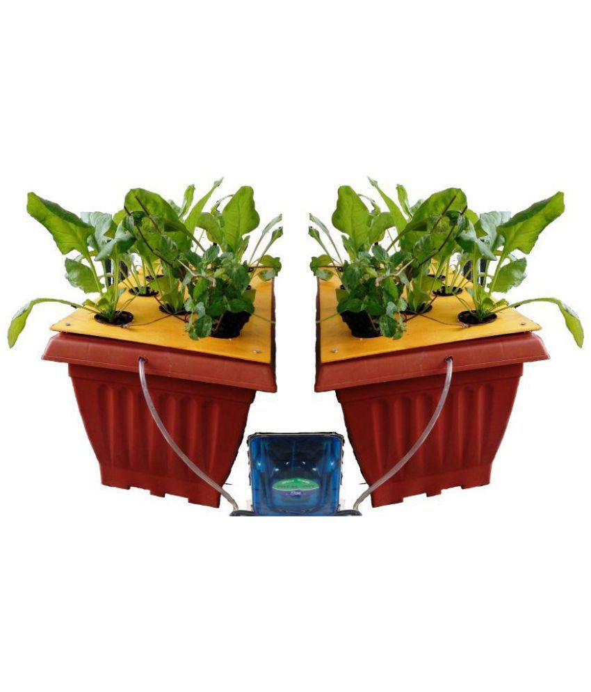 Radongrow DWC HYDROPONIC GROW KIT Outdoor Plant Container Accessories