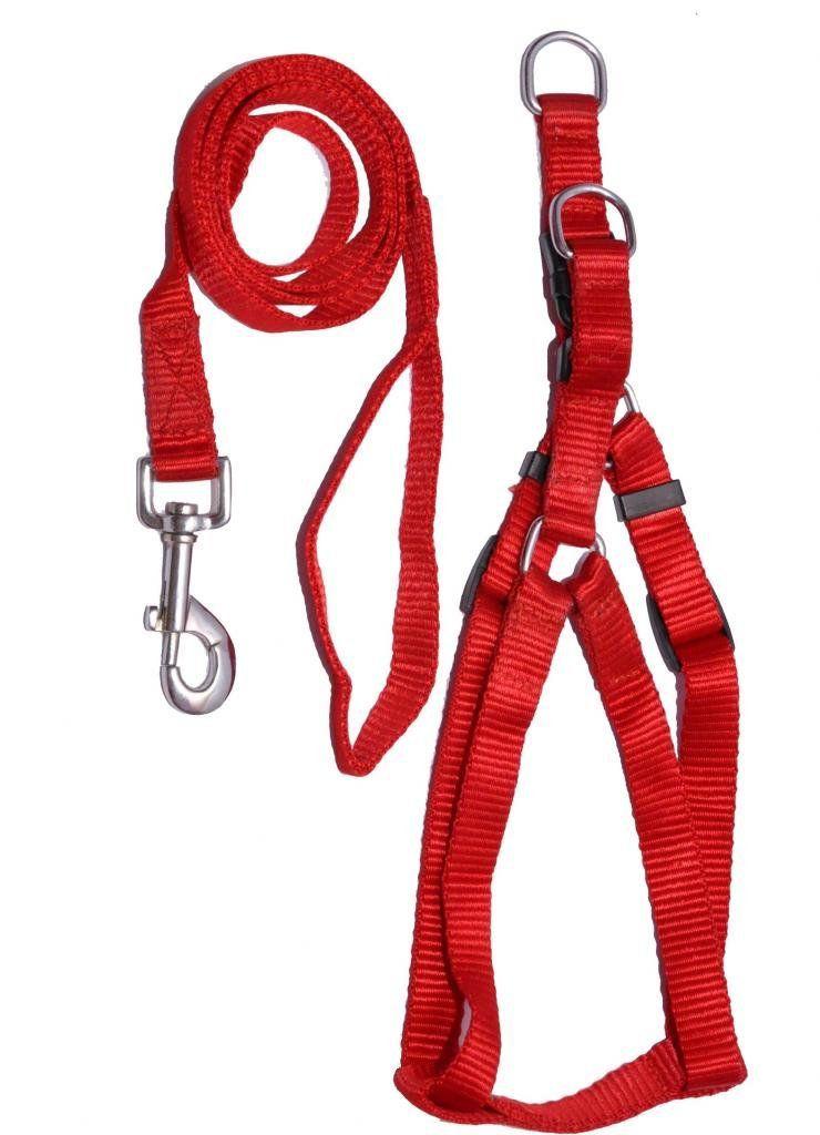 Body Set-Leash+Harness (Plain) - 1Inch - Dog Leash and Harness