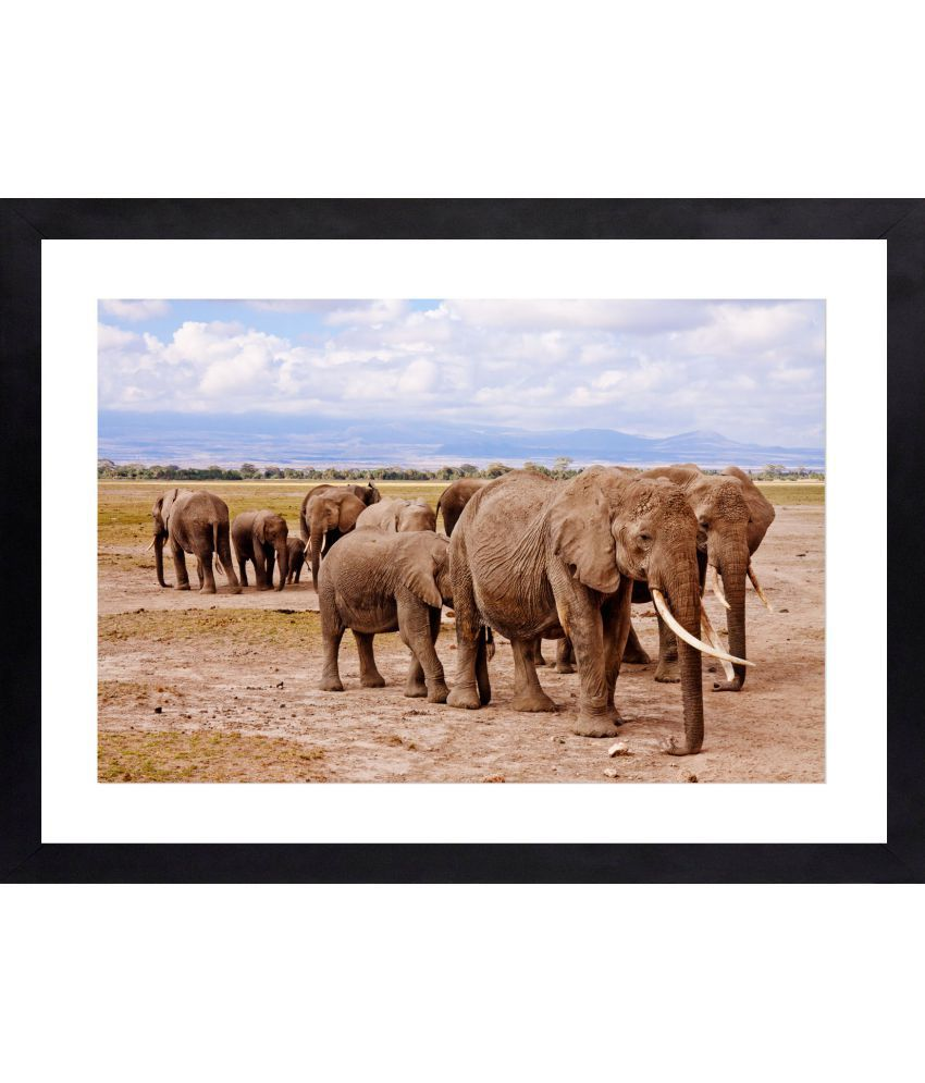 Craftsfest Elephant Symbol Of Good Luck Canvas Painting With Frame Single Piece