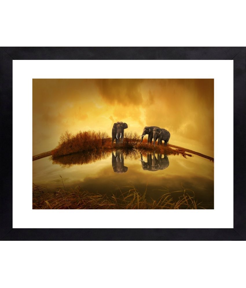 Craftsfest Elephant Canvas Painting With Frame Single Piece