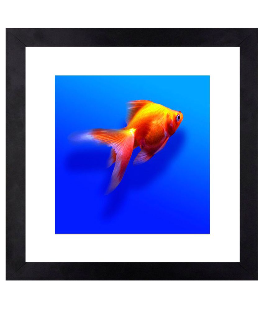 Craftsfest Golden Fish Canvas Painting With Frame Single Piece