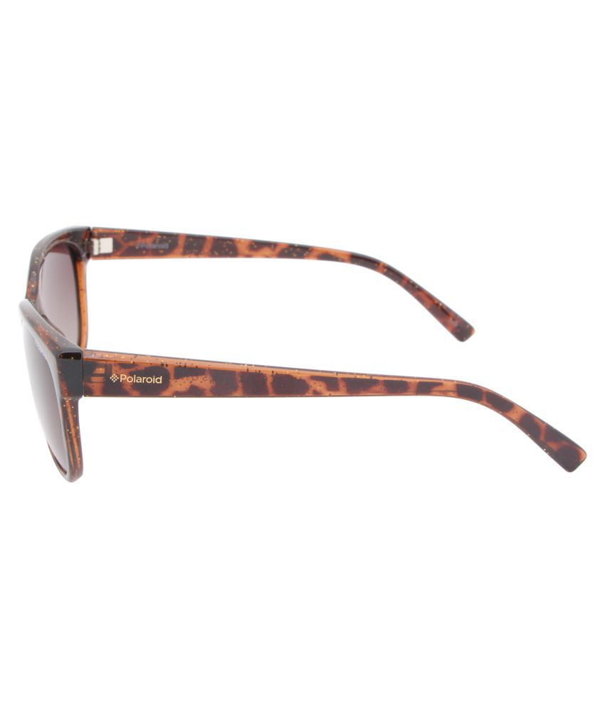 b700f89a761 Polaroid Brown Cat Eye Sunglasses ( PLD 4030 S Q3V 55LA ) - Buy ...