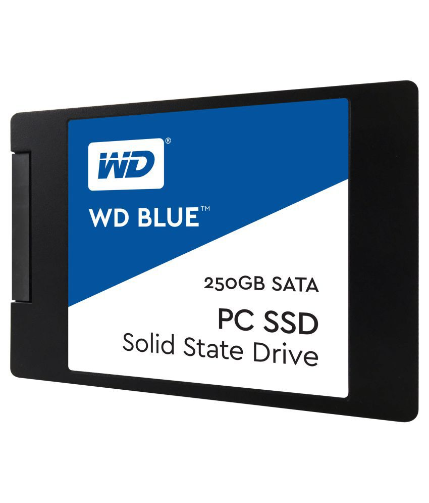 WD WDS250G1B0A 250 GB SSD Internal Hard drive