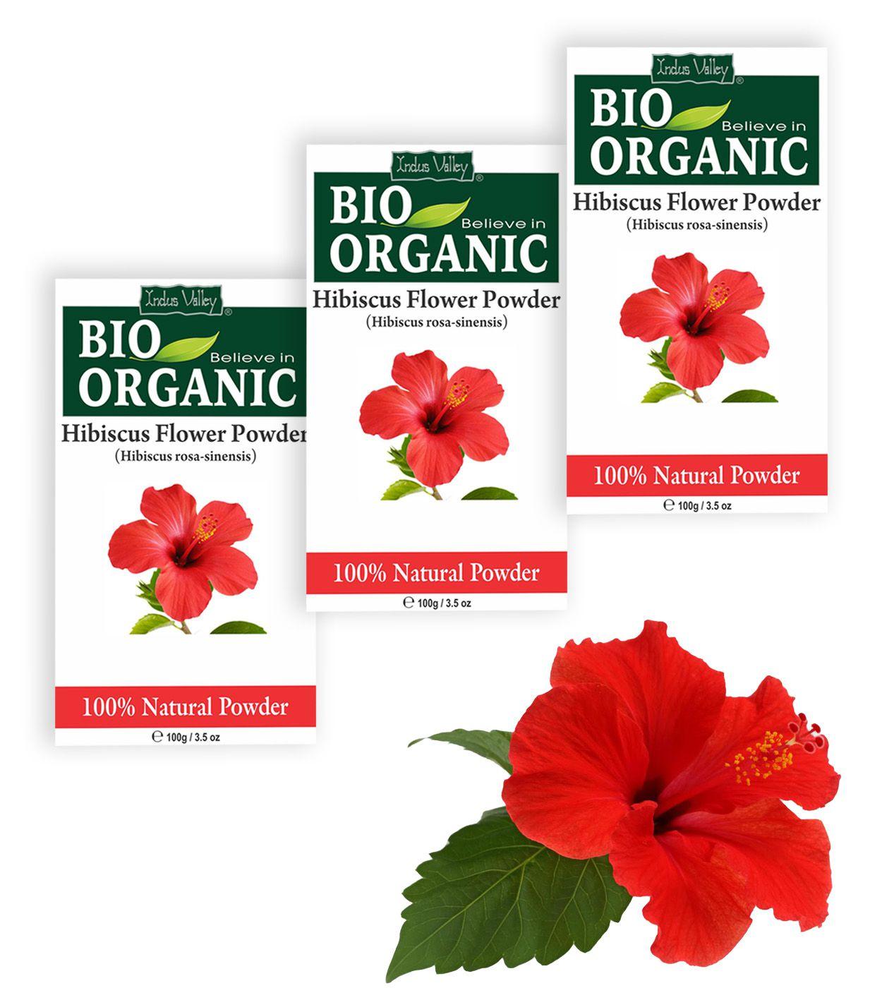 Indus valley bio organic hibiscus powder hair scalp treatment 300 gm indus valley bio organic hibiscus powder hair scalp treatment 300 gm pack of 3 izmirmasajfo