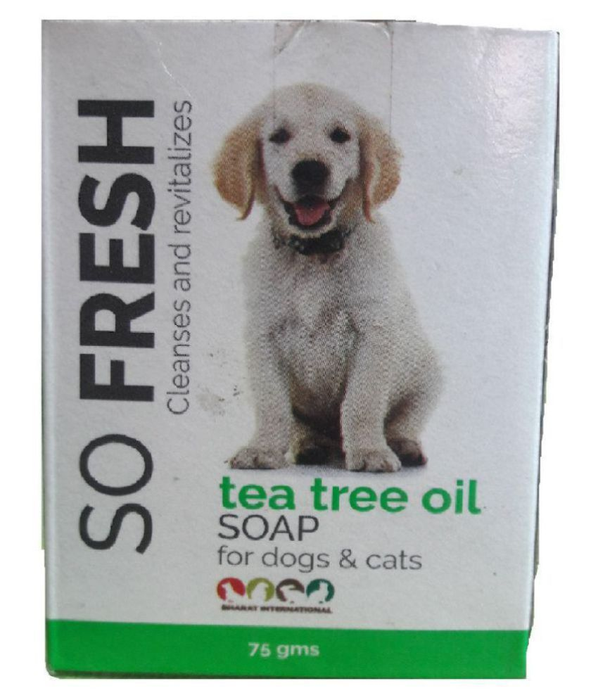 SO FRESH Soap