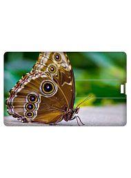 Printland Credit Card Shape 16GB USB 2.0 Fancy Pendrive Single