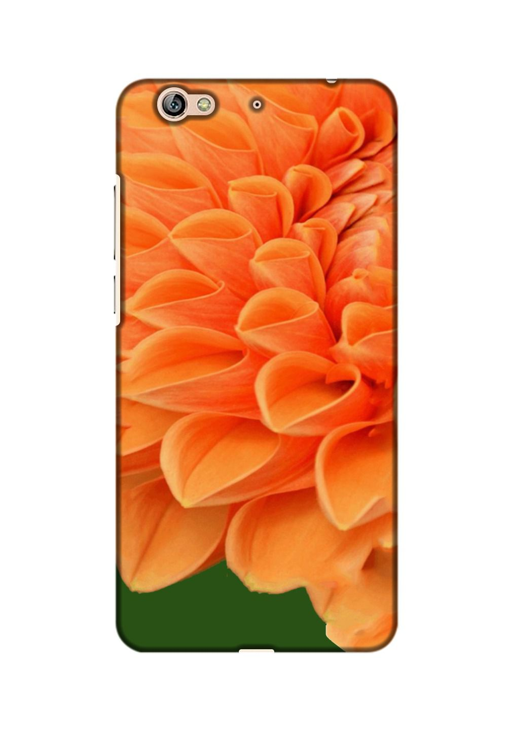 Gionee S6 3D Back Covers By Printland