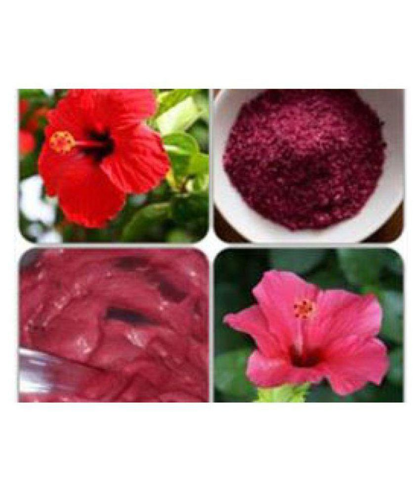 P3 Organic Pure Hibiscus Flower Powder Hibiscus Powder Henna 100 Gm