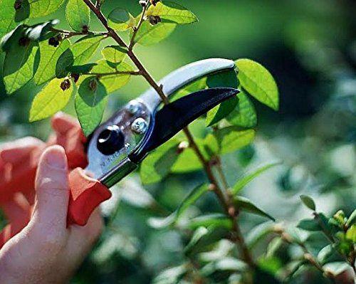 skyclean Garden Scissor