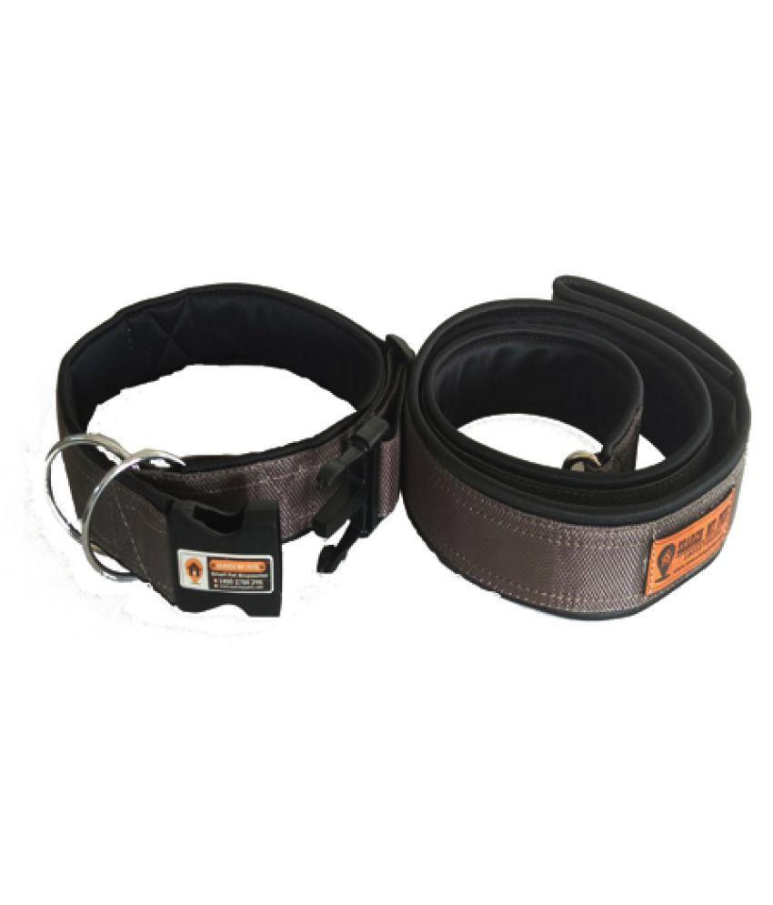 Grey Smart Dog Collar Belt With Leash 1 Inch