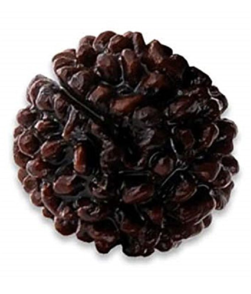 1 Mukhi Gola Dana Super Deluxe Quality  Rudraksha By Lab Certified