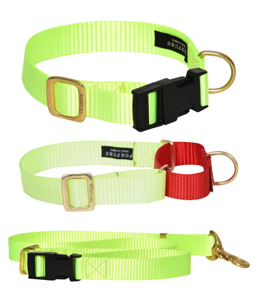 FORFURS Classic Snap Collar, Martingale Collar and Adjustable Leash Set for Medium Dogs (Medium: 14-18 inch, Lime Green)