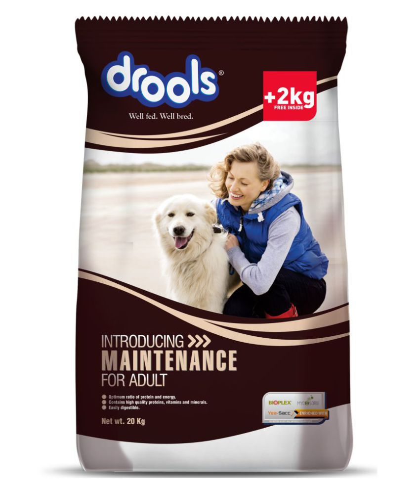Drools Maintenance Chicken 20 kg Dry Adult Dog Food