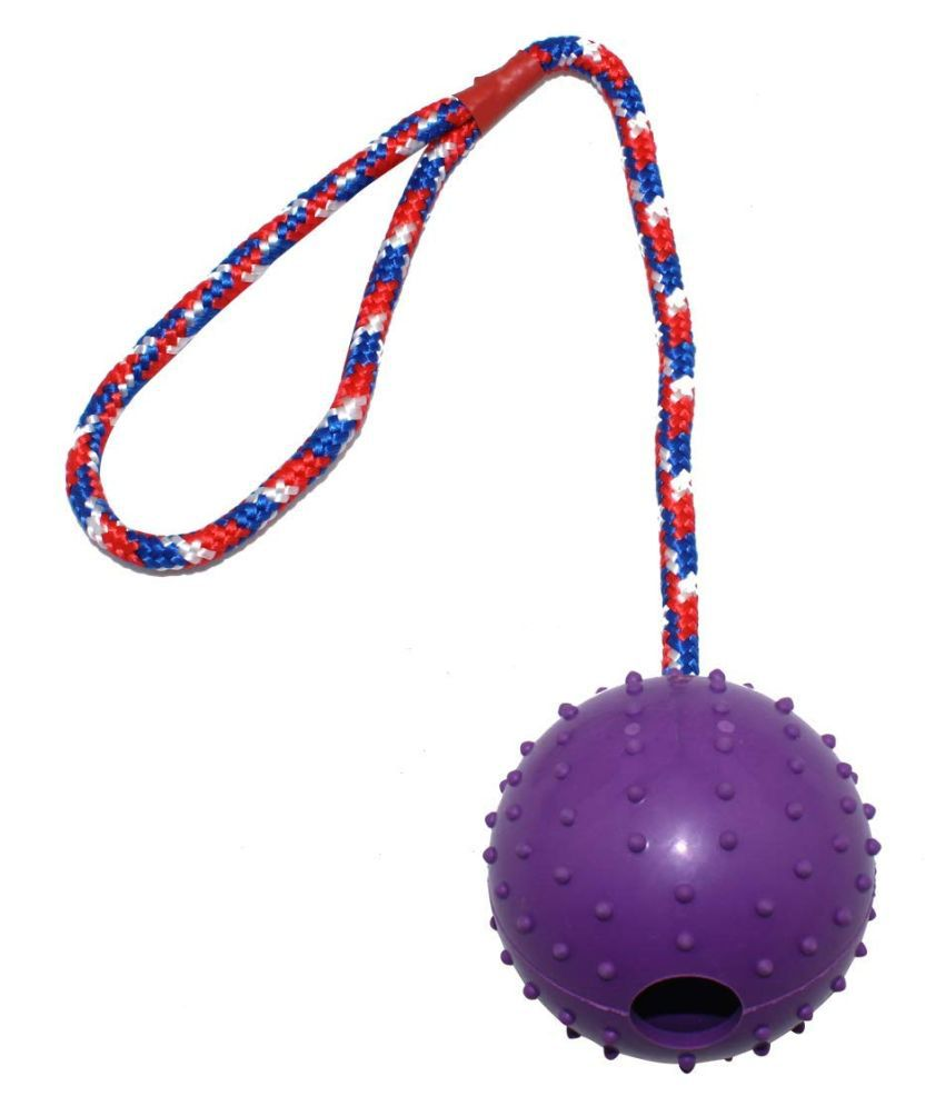 Emily Pets Rubber Ball Rope Dog Chew Toy Medium (Violet)