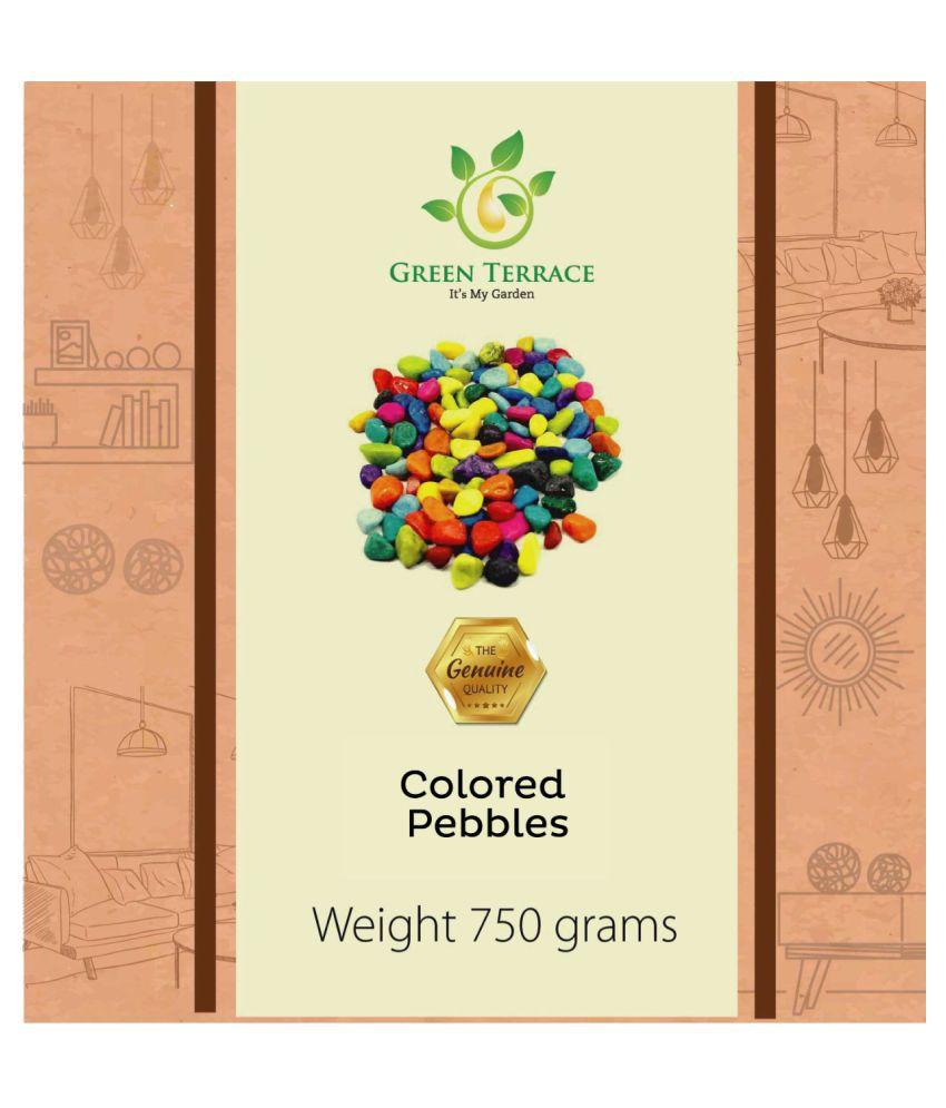 Green Terrace Decorative Pebble Multi-Colour W